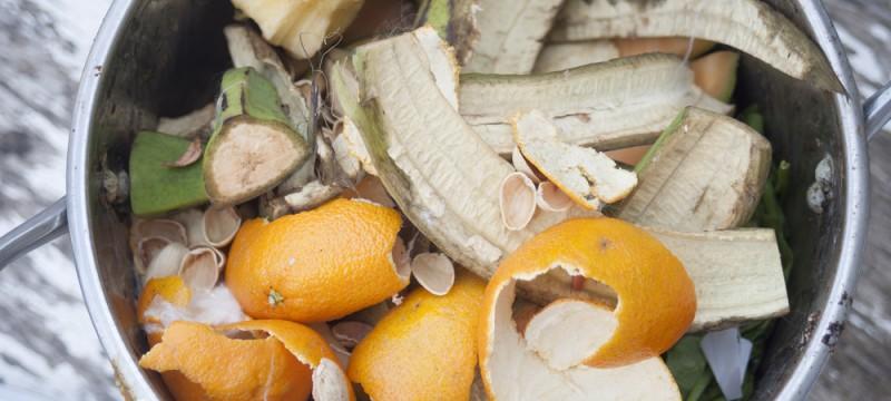 Mesa redonda «Pérdidas y desperdicio de alimentos»