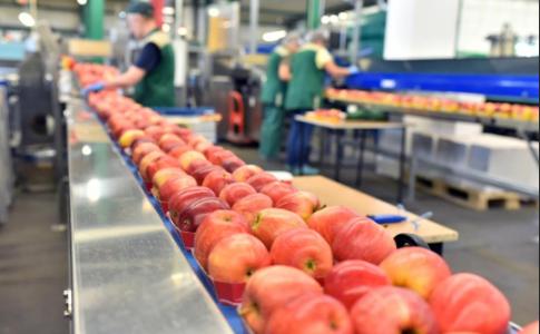Webinar gratuito: Pon en marcha un plan contra el desperdicio de alimentos en tu empresa