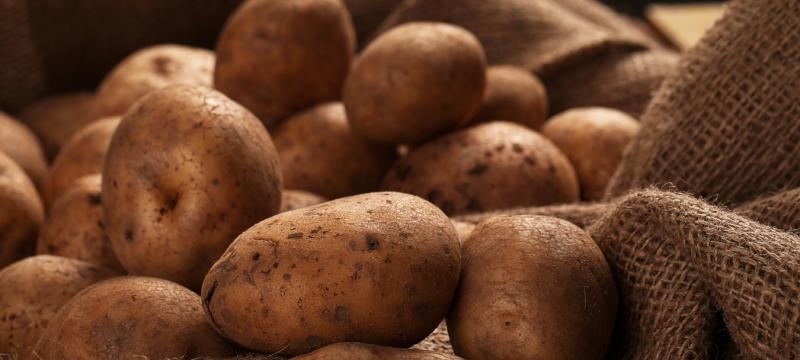 ¿Cómo conservar las patatas de forma correcta?